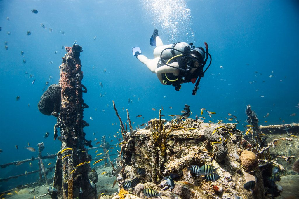 Diving the River Taw wreck off St. Kitts