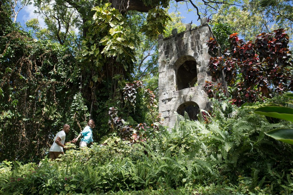 An afternoon stroll through Romney Manor in St. Kitts